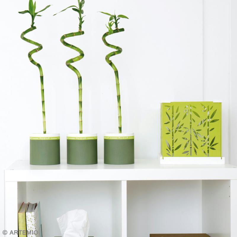 comment faire du vert anis en peinture. Black Bedroom Furniture Sets. Home Design Ideas