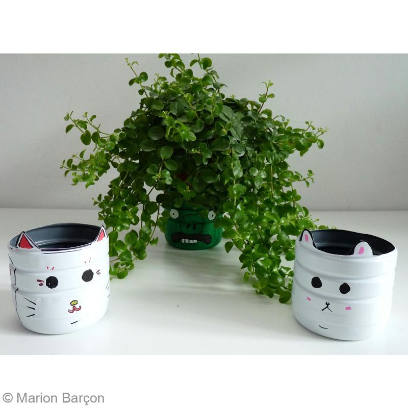 fabriquer un cache pot avec une bouteille en plastique. Black Bedroom Furniture Sets. Home Design Ideas