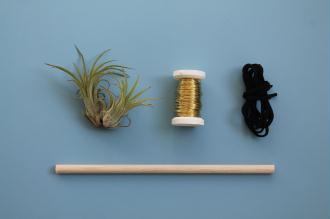 suspension originale diy pour plantes sans terre id es et conseils d coration. Black Bedroom Furniture Sets. Home Design Ideas