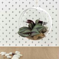 DIY Home deco : Suspension florale zen