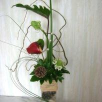 Composition floral en hauteur avec anthurium, ornithogalmus et feuille de xanadoo