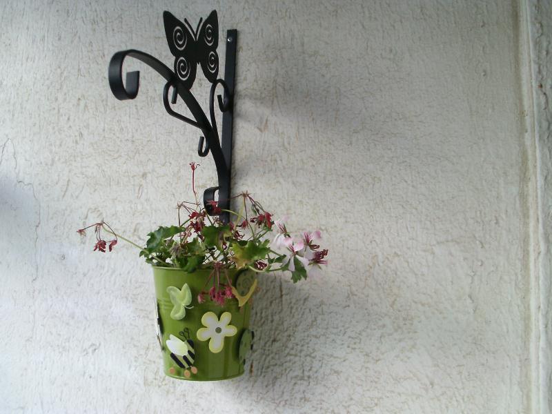 pot de fleur vert suspendu par le papillon noir. Black Bedroom Furniture Sets. Home Design Ideas